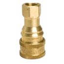 0.25″ Female (Brass)