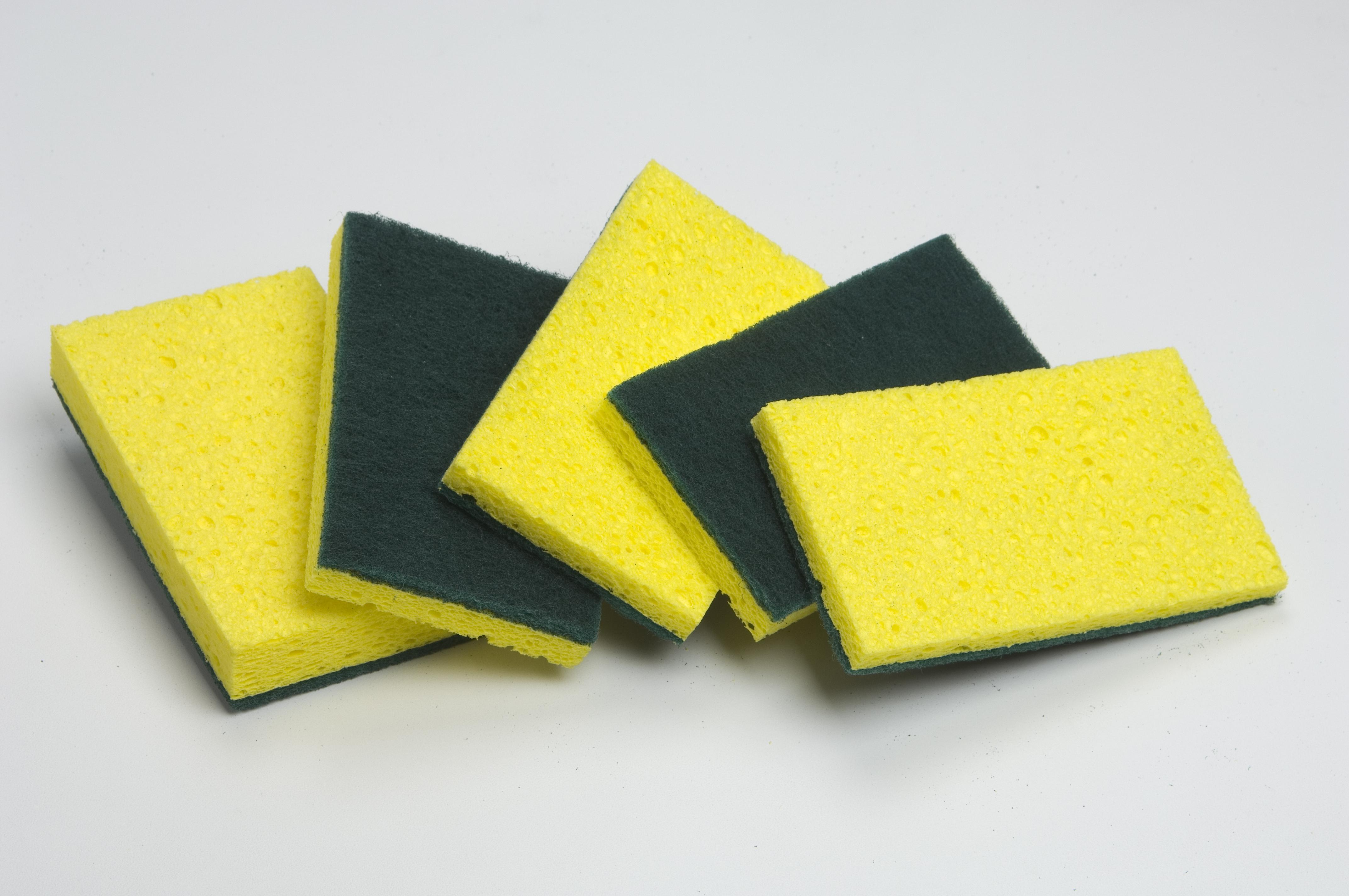 Scotch Brite Pads | Carpet Cleaning Equipment, Machines ...